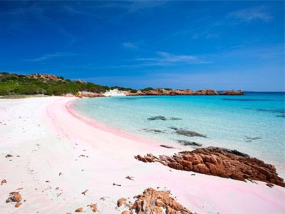 the famous pink beach of budelli island at la maddalena